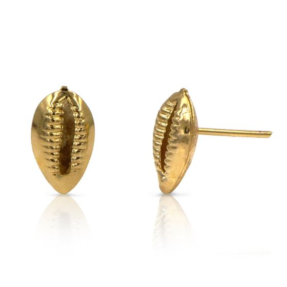 Small Cowrie seashell earrings in gold filled